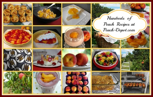 All Peach Recipes with Pictures at Peach Depot