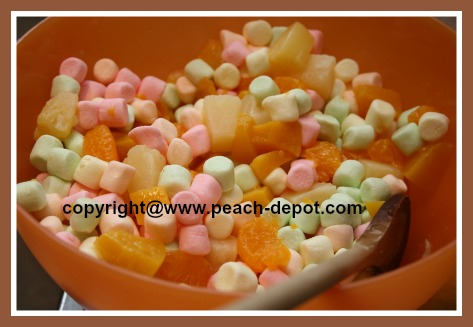 Canned Fruit Salad Recipe Ingredients