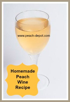Homemade Peach Wine Recipe Recipe