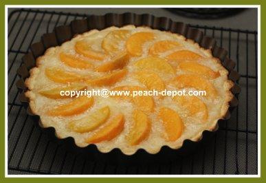 Single Crust Peach Pie with Shortbread Like Crust Easy Peach Pie