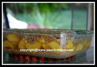 Oven Ready Peach Crisp