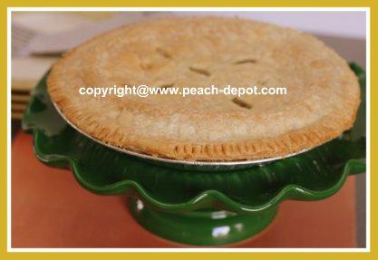 Homemade Peach Rhubarb Pie