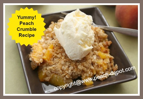 Image of the Best Peach Crumble!