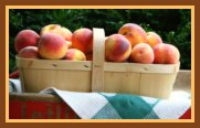 All Recipes with Peaches