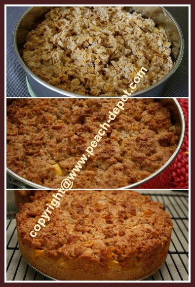 Homemade Peach Cake Recip