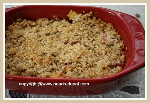 Homemade Peach Fruit Crumble with Rhubarb and Oatmeal Topping