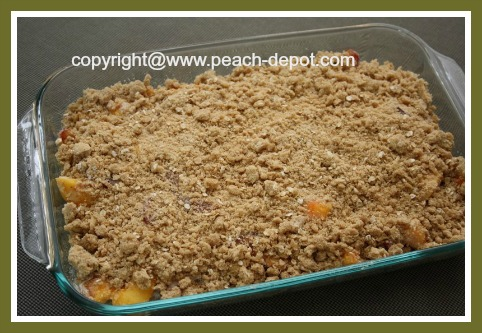 Homemade Peach Plum Crisp with Oatmeal Topping in a 9