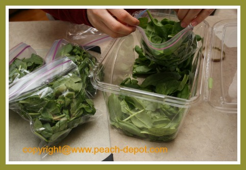 Make Frozen Spinach Smoothies