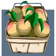 Peaches to be Preserved
