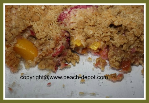 Peach and Plum Crisp Recipe - Simple Fresh Peach or Nectarine and Plum ...
