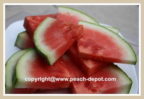 Preparing Watermelon in Wedges for the Grill / BBQ