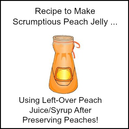 Peach Jelly Made with Left Over Peach Juice/Syrup after Preserving Peaches