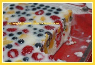 Frozen Fruit Dessert Recipe Low Fat Dessert or Salad Idea