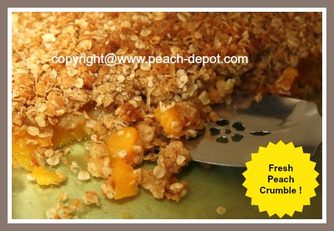 Peach Crumble Recipe Made with Fresh Peaches