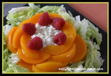 Peach Salad Using Canned Peaches, Cottage Cheese, Iceberg Lettuce and Berries