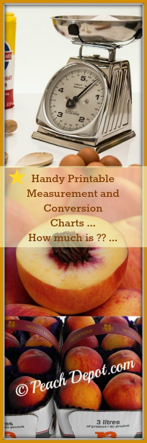 Printable Measurement and Conversion Charts