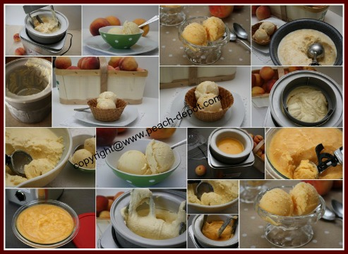 Best Recipes for Homemade Peach Ice Cream and Peach Sorbet