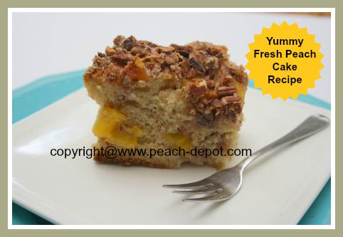 Fresh Peach Cake Recipe to Make with Fresh Peaches