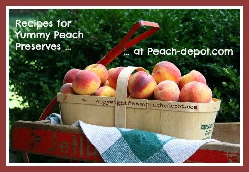 Peaches to Make Peach Preserves/Conserves Recipes